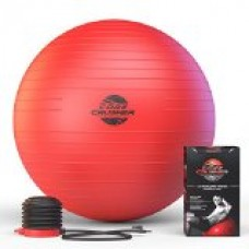 The Best Fitness Exercise Ball 65cm with Pump - Best for Abs - Stability - Tone - Core - Yoga - Pilates - Made with Anti-Burst Material - BONUS workout Ebook Included Featuring 20 Core Crushing Exercises & Workouts